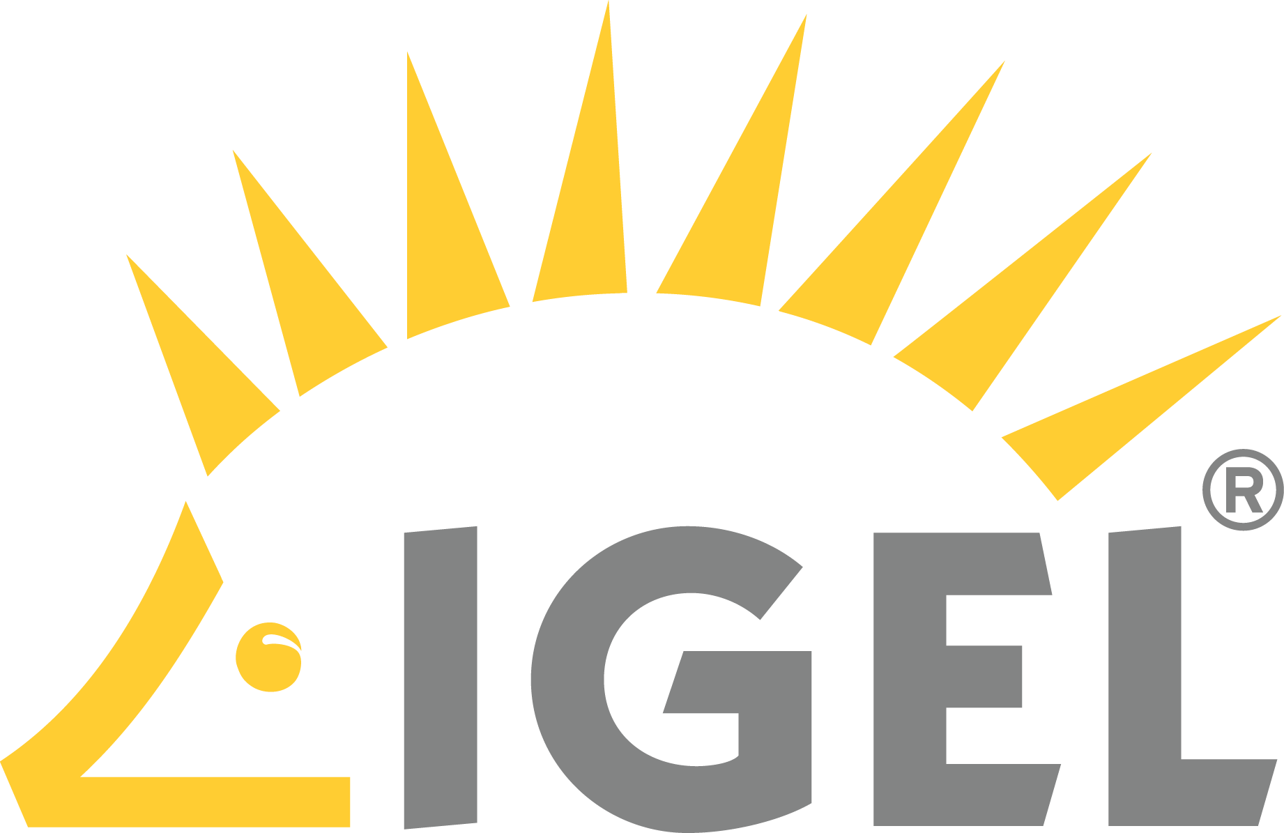 IGEL Integrated WLAN module for UD9 & UD10